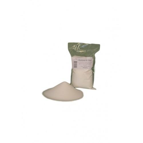 Bicarbonate de sodium recharge 500 g (Wallo-wash)