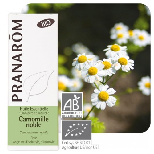 Camomille noble bio 5 ml (Pranarôm)