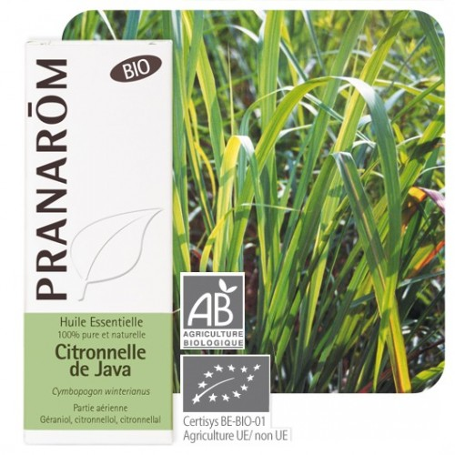 Citronnelle de Java bio 10 ml (Pranarôm)