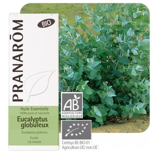 Essentiele olie bio Eucalyptus globulus 10 ml (Pranarôm)