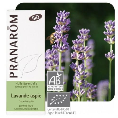 Spijklavendel essentiële olië bio 10 ml (Pranarôm)