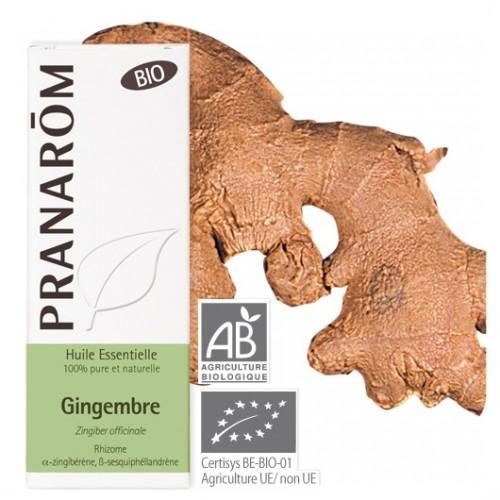 Essentiële olie gember bio 5 ml (Pranarôm)