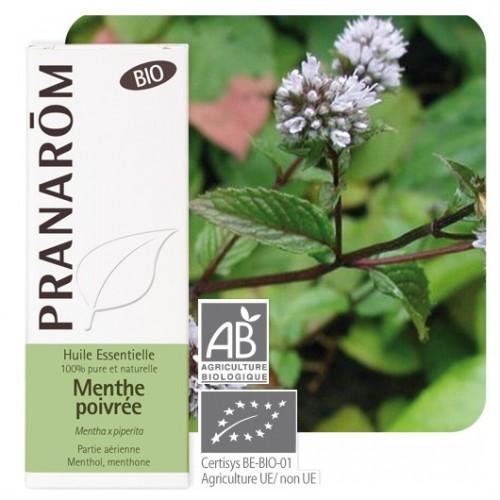 Essentiële olie pepermunt bio 10 ml (Pranarôm)