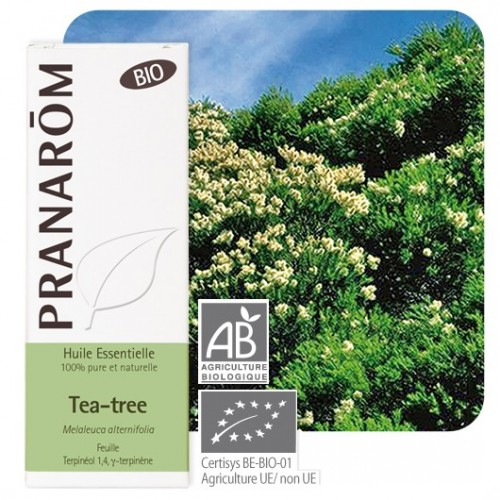 Tea-Tree bio 10 ml (Pranarôm)