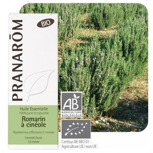 Rozemarijn cineolhoudend 10 ml (Pranarôm)