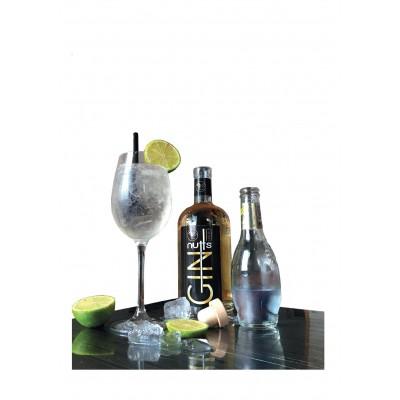 Gin nutts Premium 70 cl (Nutt's Lenoir)