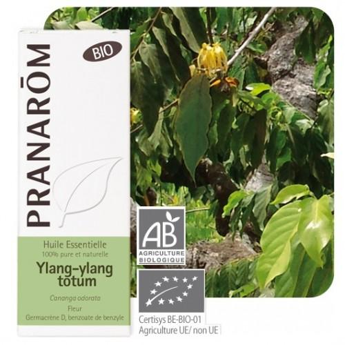 Ylang-Ylang totum bio 5 ml (Pranarôm)