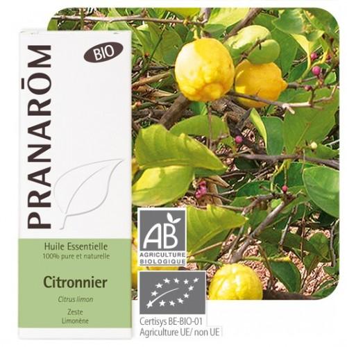 Citronnier bio 10 ml (Pranarôm)