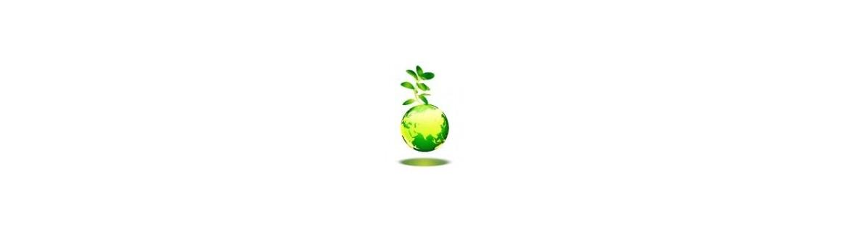 Groene schoonmaakproducten
